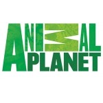 Link to Animal Planet – Dog Breed Selector Website