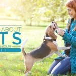 Link to Pet Healthy Tips Website